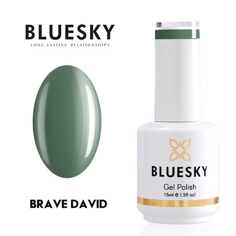 Gel Polish Bluesky 15ML BRAVE DAVID